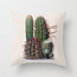 Vintage Cactus Print Throw Pillow
