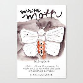 White Moth Canvas Print