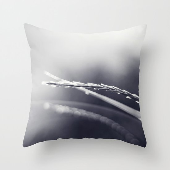 Evening Light in Black and White Throw Pillow