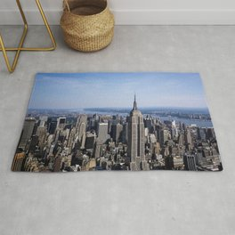 Aerial view of New York City Rug