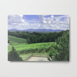 In Wine Country Metal Print