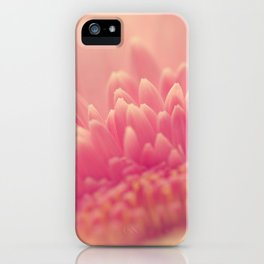 Pink Gerbera Daisy iPhone Case