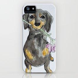 Spring Hund iPhone Case