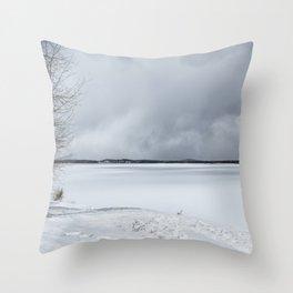 Serenity - Jackson Lake in April Throw Pillow