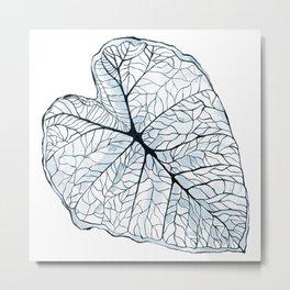 Blue Alocasia Botanical Metal Print