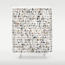Dogs, Dogs and dogs Shower Curtain
