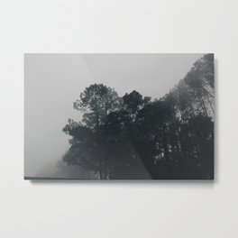 Fog-filled Skies Metal Print