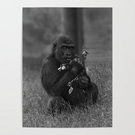 Cheeky Gorilla Lope Mono Poster