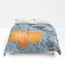 Cosmo and Evergreen Comforters