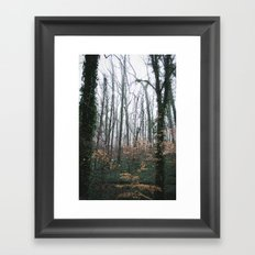 Dahlonega Woods Framed Art Print