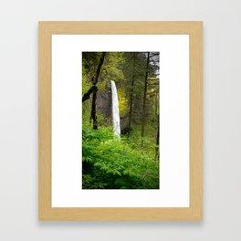 (#60) Lower Latourell Falls Framed Art Print