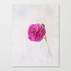 Carnation on paper Canvas Print