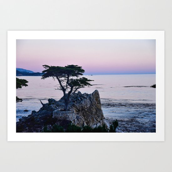 Lone Cypress at Sunset by anaruthlarios