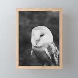 The Owl and The Forest Framed Mini Art Print
