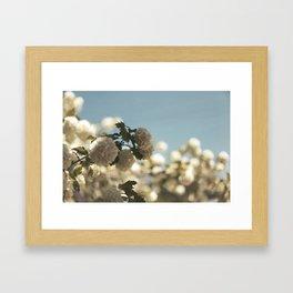 Spring to it Framed Art Print