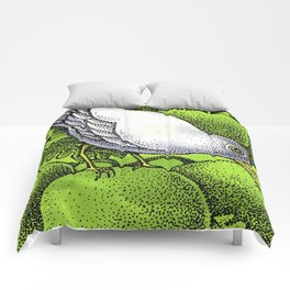 WHITEBIRD Comforters