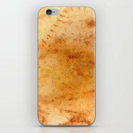 Rupestrian iPhone Skin