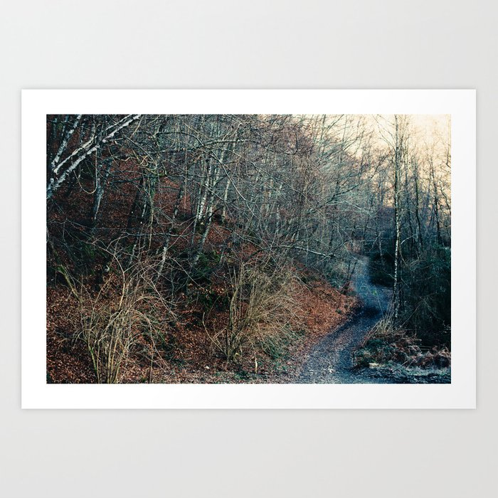 Blue Path Art Print