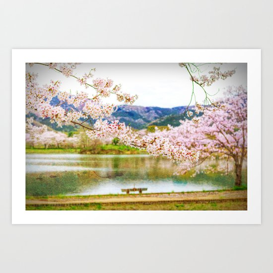 Beautiful cherry blossom and pond 2 Art Print