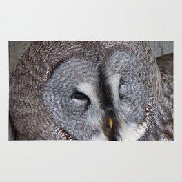 Great Grey Owl Rug