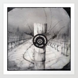 Cabernet - black and white wine photo vineyard Art Print