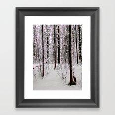 Cold Trees Framed Art Print