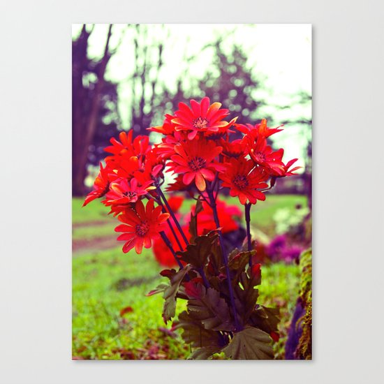 Simple red flowers Canvas Print