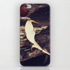 Beach Feathers iPhone Skin