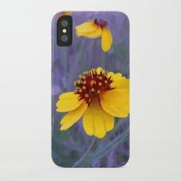 Mathematic Sunset iPhone Case