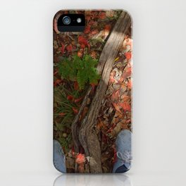 Steps in the flamboyant leaves iPhone Case