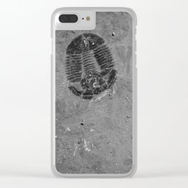 Utah - Trilobite Fossil Shards Clear iPhone Case