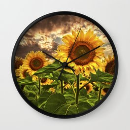 Sunflowers at Sunset Wall Clock