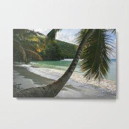 Maho Palms Metal Print