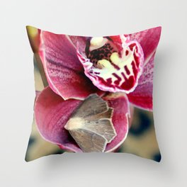 Oddly, Not A Moth Orchid Throw Pillow