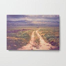 Natures Roadtrip Metal Print