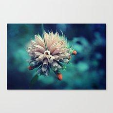 Spring Flower 10 Canvas Print