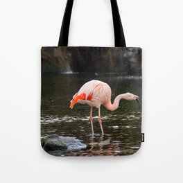 Pink on Two Legs Tote Bag
