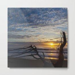 Driftwood Metal Print