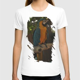 Colors1 T-shirt