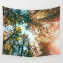 California Redwoods Sun-rays and Sky Tapestry by Elena Kulikova by society6