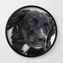 Black Dog in the Snow Wall Clock