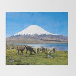 Chungara Lake, Chile Throw Blanket