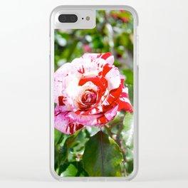 Rose Red Flower Garden Clear iPhone Case