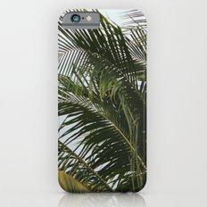 PALMY iPhone 6s Slim Case
