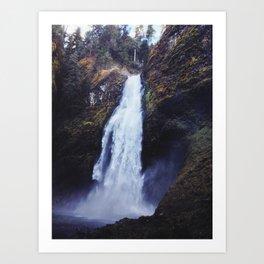Secret Oregon Waterfall Art Print