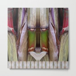 Corn Husk Hearing Metal Print