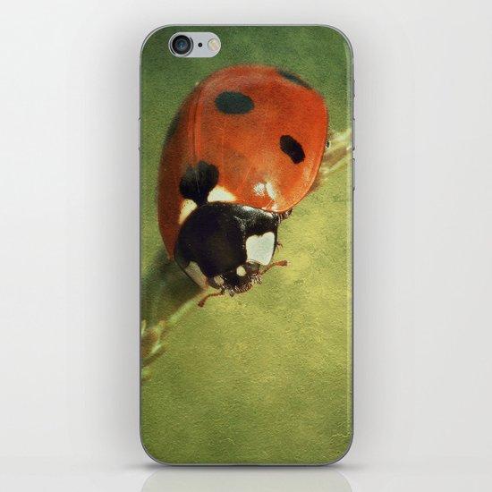 Look Down Lady iPhone & iPod Skin