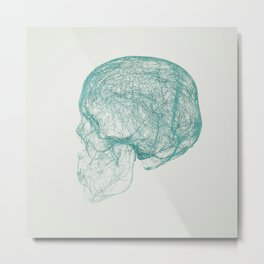 skull trails Metal Print