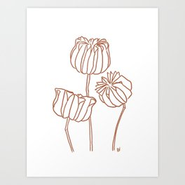 Seed Pods Botanical Print (Terracotta and White) Art Print