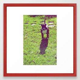 Lucy Framed Art Print